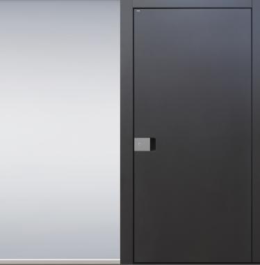 Haustür modern, anthrazit, TOPICcore, Edelstahl, Sicherheitstür, passivhaustauglich, besser als alu, Seitenteil, Glas